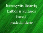 Intensyvus_lietuviu_kalbos_ir_kulturos_kursai_pradedantiems_lingua_lituanica_2_.png