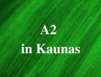lietuviu_kalbos_kursai_lingua_lituanica_Vilniuje_1_.png