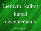 lietuviu_kalbos_kursai_vilniuje_lingua_lituanica_1_.png
