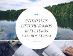 lietuviu_kalbos_vasaros_kursai_uzsienieciams_lingua_lituanica.png