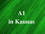 lingua_lituanica_lithuanian_language_courses_2_.png
