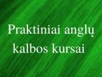 praktiniai_anglu_kalbos_kursai_lingua_lituanica.png